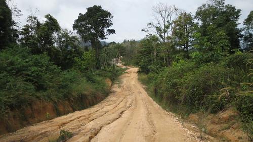 Koh Samui Mountain サムイ島の山にて (7)