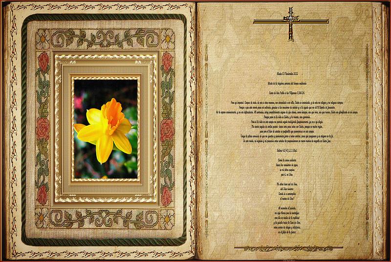 Lectura Carta de San Pablo a los Filipenses 1,18b-26. Obra Padre Cotallo