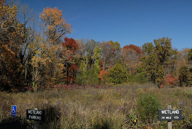 Shaw Nature Reserve (the Arboretum), in Gray Summit, Missouri, USA - wetland parking