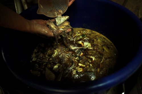魚精、自製魚肥