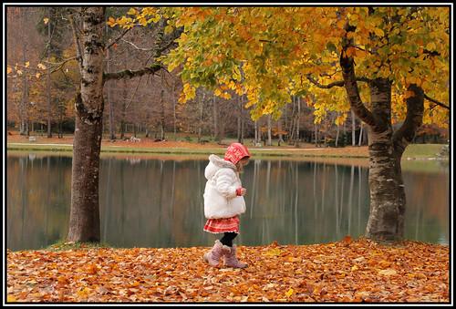 Impressive autumn colours in Samoens