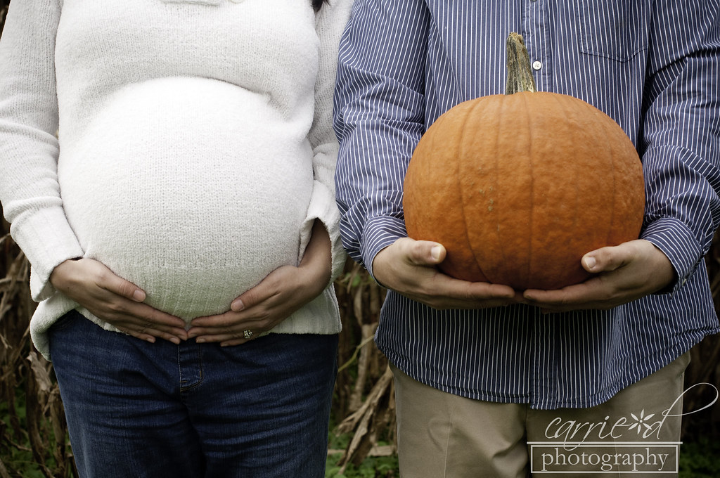 Harford County Maternity Photographer - Swan Harbor Farm Maternity Photographer - Wilmington DE Maternity Photographer - Pumpkin Maternity Photo - Christina 10-8-2012 (133 of 205)