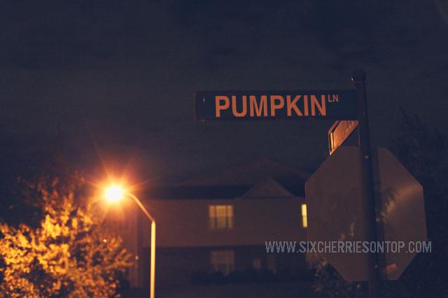 halloween 2012_pumpkin lane