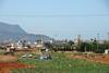 Kreta 2007-2 004