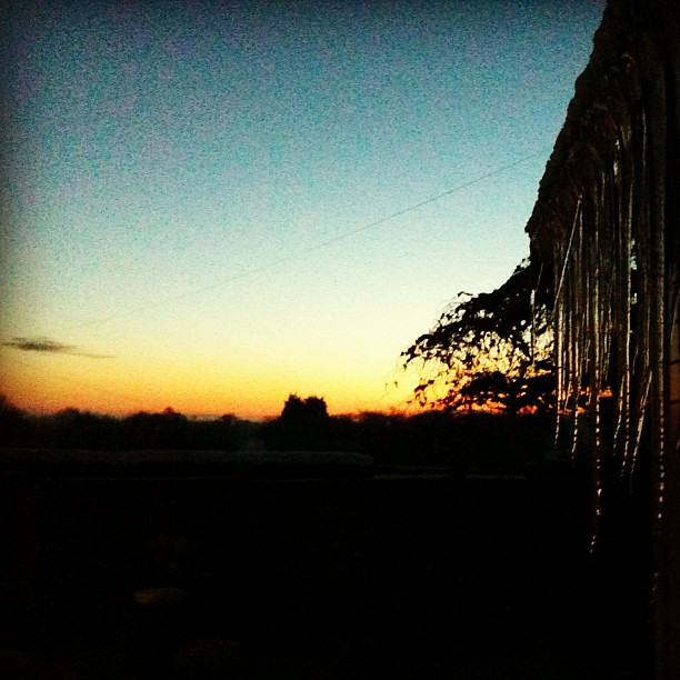 sunrise with icicles
