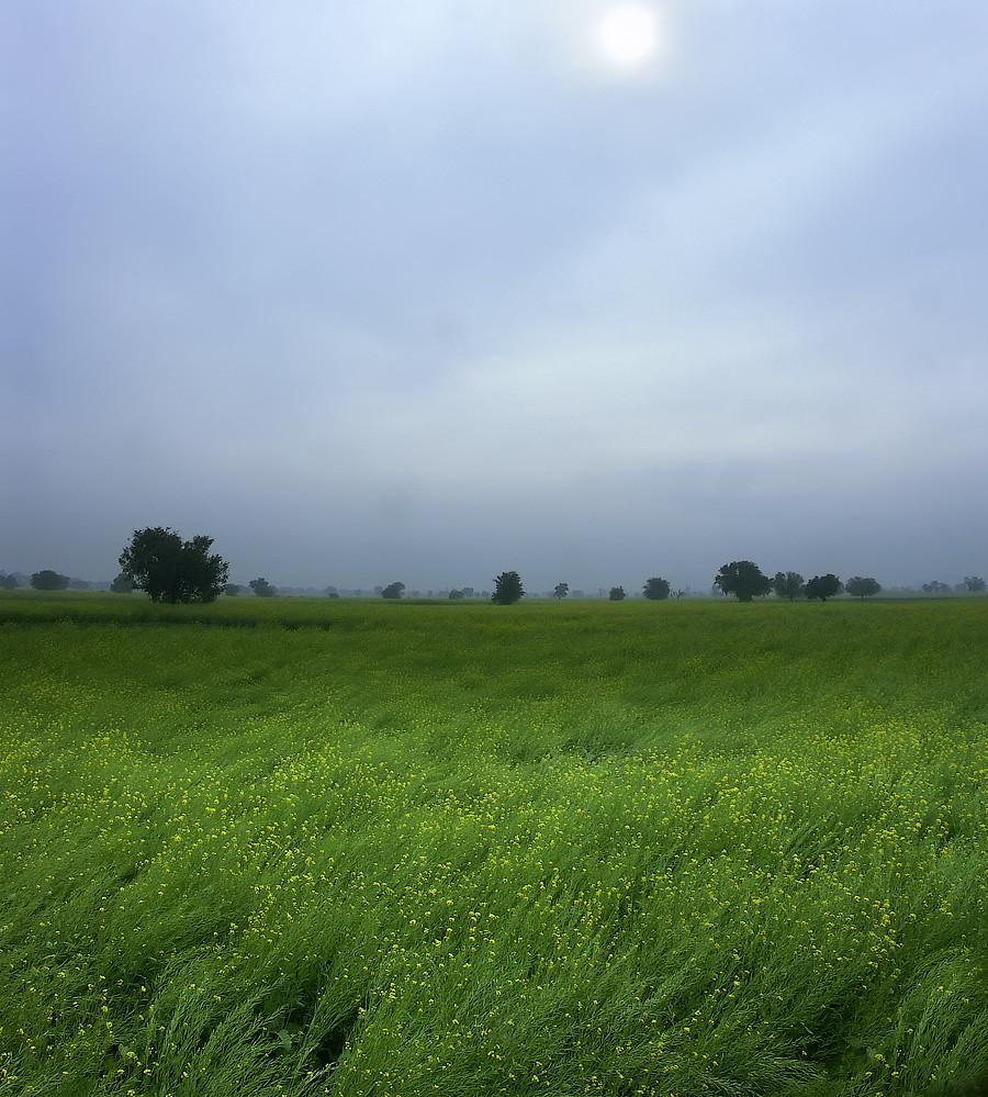 51-Jaipur-0001