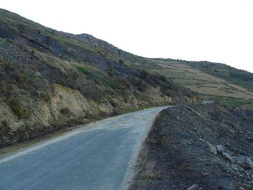P1220895 comment le feu passe la route