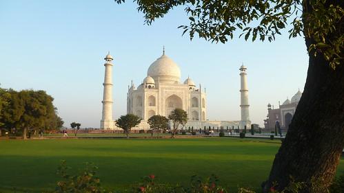 Taj Mahal & trees 1