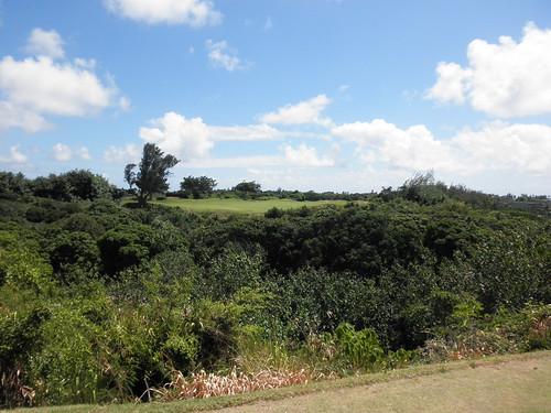Kauai Lagoon Golf Club 184