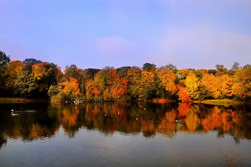 park autumn poland polska warszawa warsawa skaryszewski 4eye mygearandme