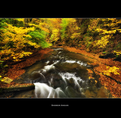statepark longexposure autumn newyork fall nature water creek river landscape outdoor hiking wideangle foliage fingerlakes moravia fillmoreglen fillmoreglenstatepark shobeiransari