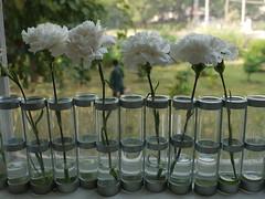 Vase d'Avril par Tsé & Tsé associées