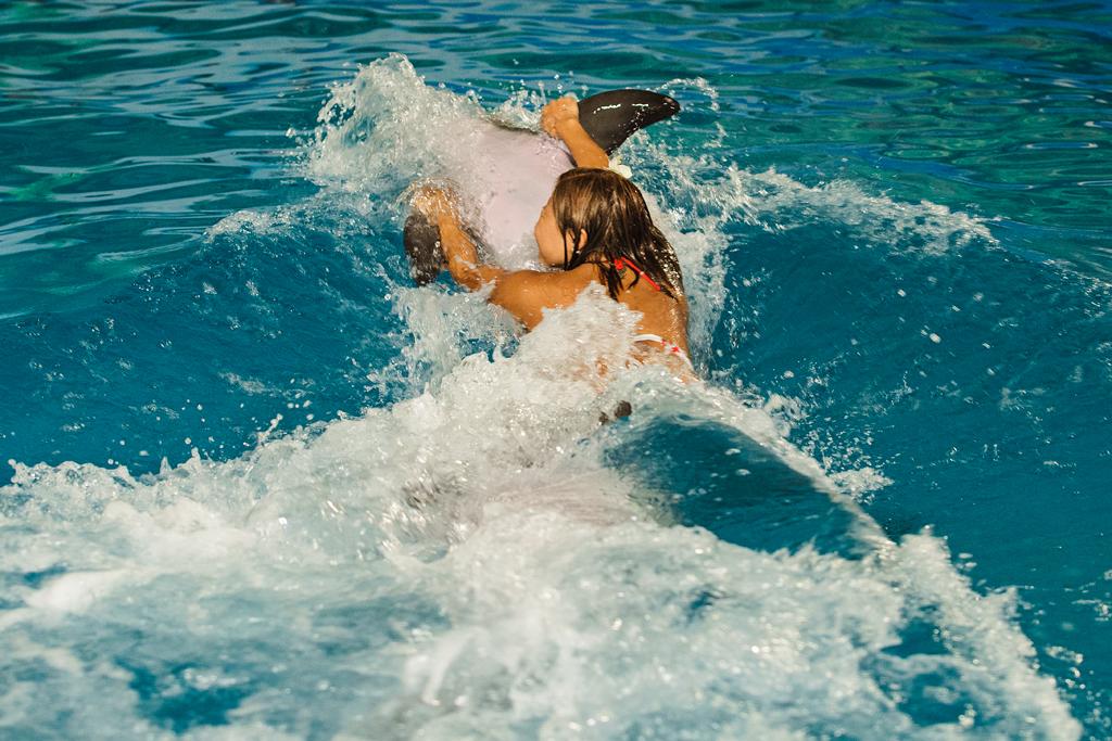Дельфинарий  в Новосибирске, фото