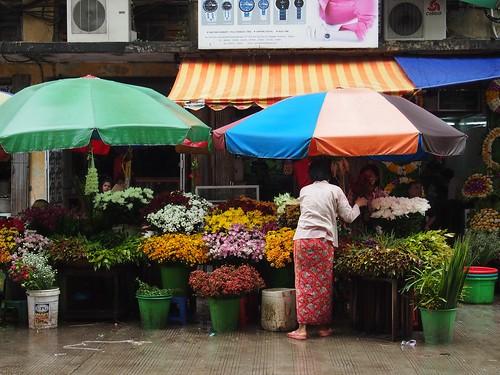 Yangon-224
