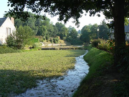 cressonnière et rivière.jpg