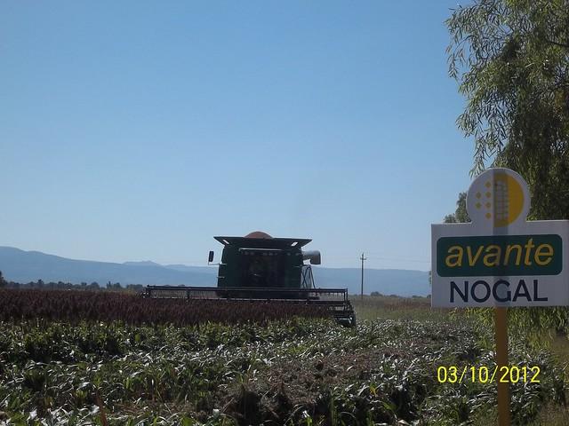 Rancho Nuevo De La Cruz