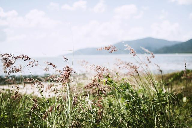 Cairns_grassmount_jamiepilgrim