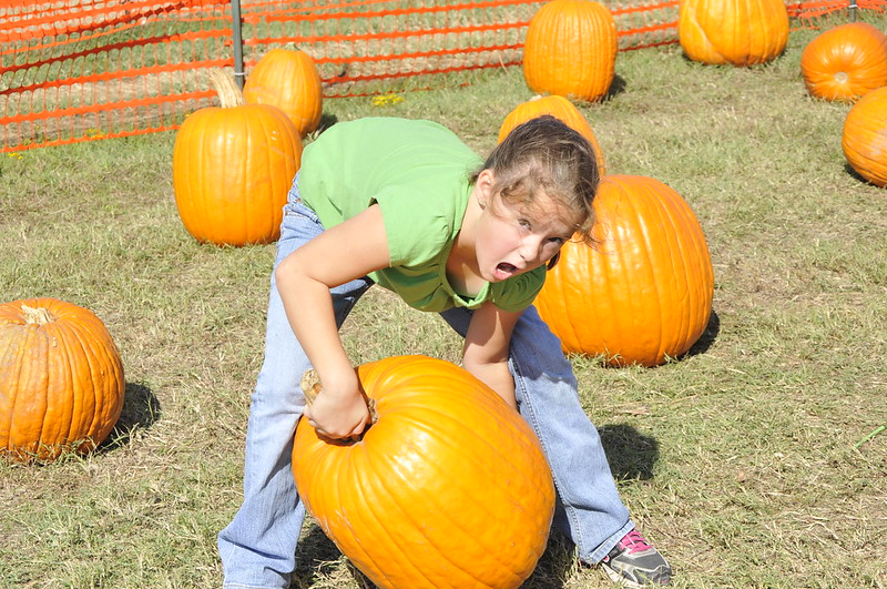 pumpkin patch_DSC1122_2012