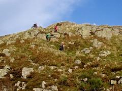steeprocks