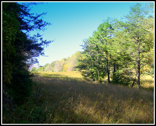 hiking alleghanycounty wilkescounty keithhall roaringgapnc stonemountainstateparknc traphillnc