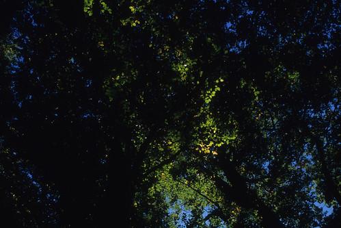 20121014006hakkoda.jpg