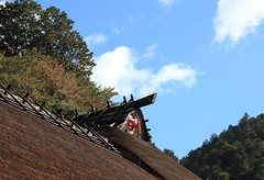 Roof / 屋根(やね)