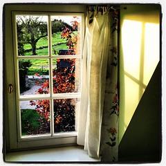 La fenêtre de mon bureau aujourd'hui ;)