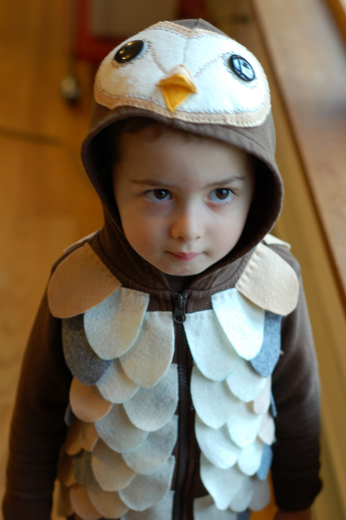 Will in his barn owl costume