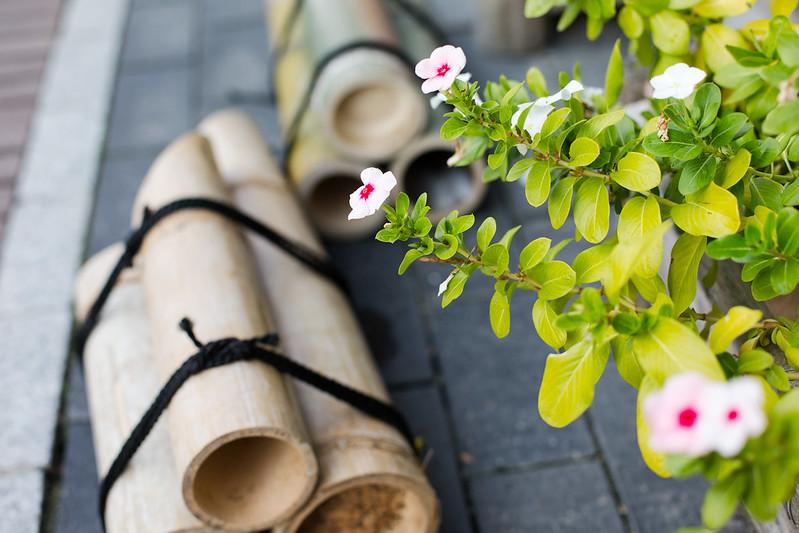たまゆら舞台探訪 竹原 憧憬の路#83