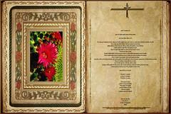 Lectura Carta de San Pablo a Filemón 1,7-20. Obra Padre Cotallo