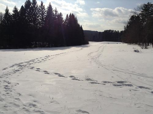 Snowy Field, Kripalu