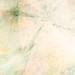 RBF_icontex_1.13_3_003