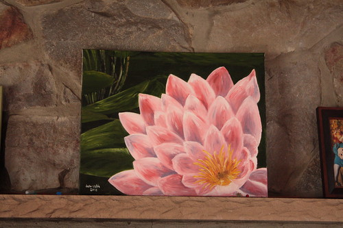 Waterlily by Paul