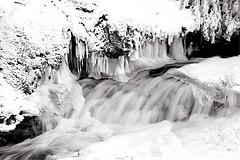 Between the Ice