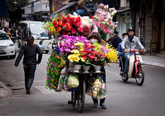 Flower Vender in the Old Quarter, Hanoi - Vietnam