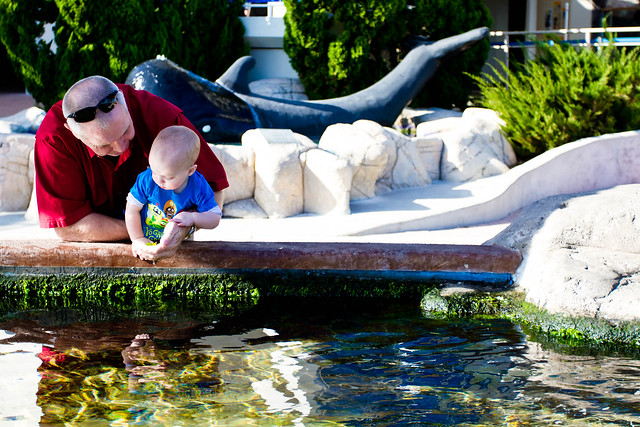 Texas State Aquarium-012.jpg