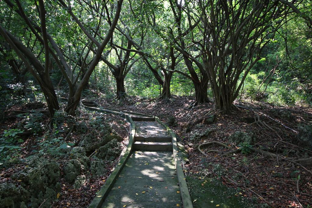 高雄林園一日遊 (4)