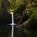Upper Punchbowl Falls - Columbia RIver Gorge by Captures.ch