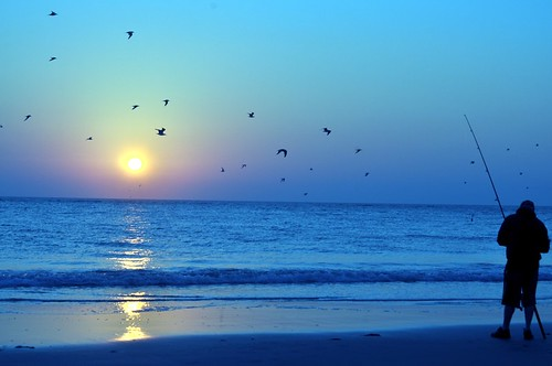 morning beach birds sunrise fishing shore wildwood octobermixmatch