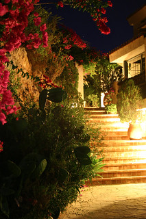 The Urban Villa.