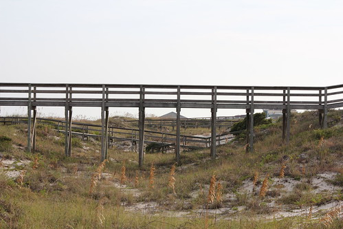 Walkways to Tybee Beach