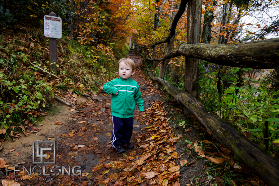 Blog Photos   Road Trip   Fall in the Smoky Mountains