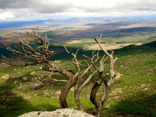 Cima del pico Ranera