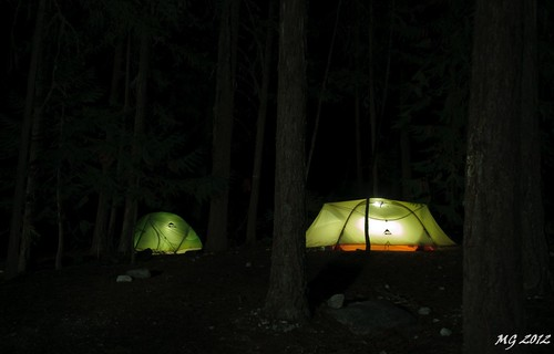 trees light canada tree nature forest lights tents tent hike provincialpark
