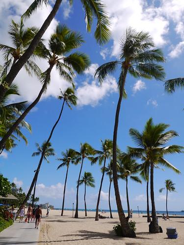 2012.10.hawaii 239