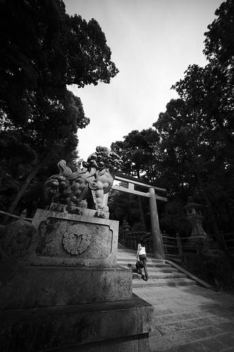 2012夏日大作戰 - 奈良 - 春日大社 (2)