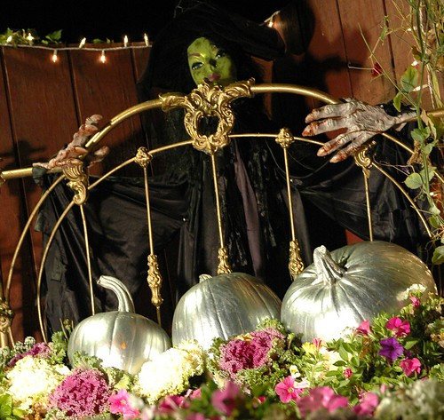 Halloween witch with a brass bed of flowers, wicked hands, decorative cabbage, and silver pumpkins, Half Moon Bay, California, USA by Wonderlane