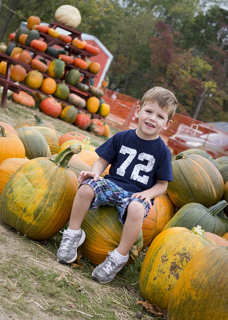 pumpkinpatch_49