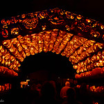 The Hallow Tunnel of Pumpkins