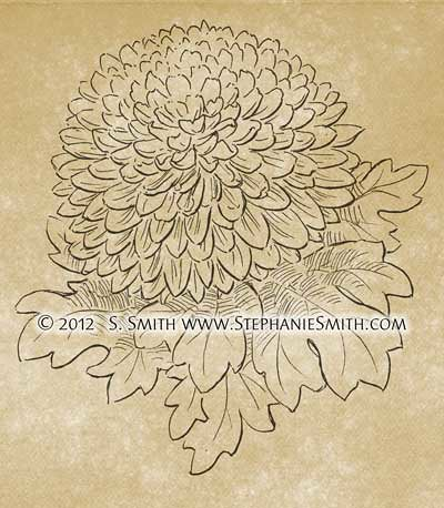 Ink Drawing of Chrysanthemum